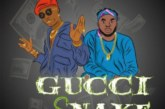 Wizkid x Slimcase – Gucci Snake (Prod. by Northboi x Killertunes)