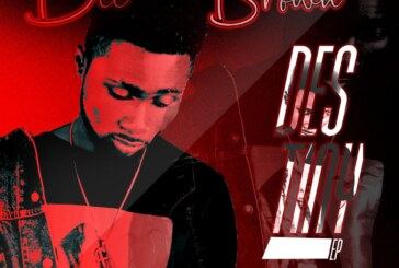 Dee Brown – Shine Shine Borbor (mixed By Foxbeatz)