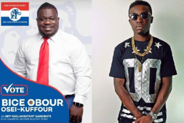 Don't Vote For Obour – Criss Waddle Tells Asante Akyem South constituents